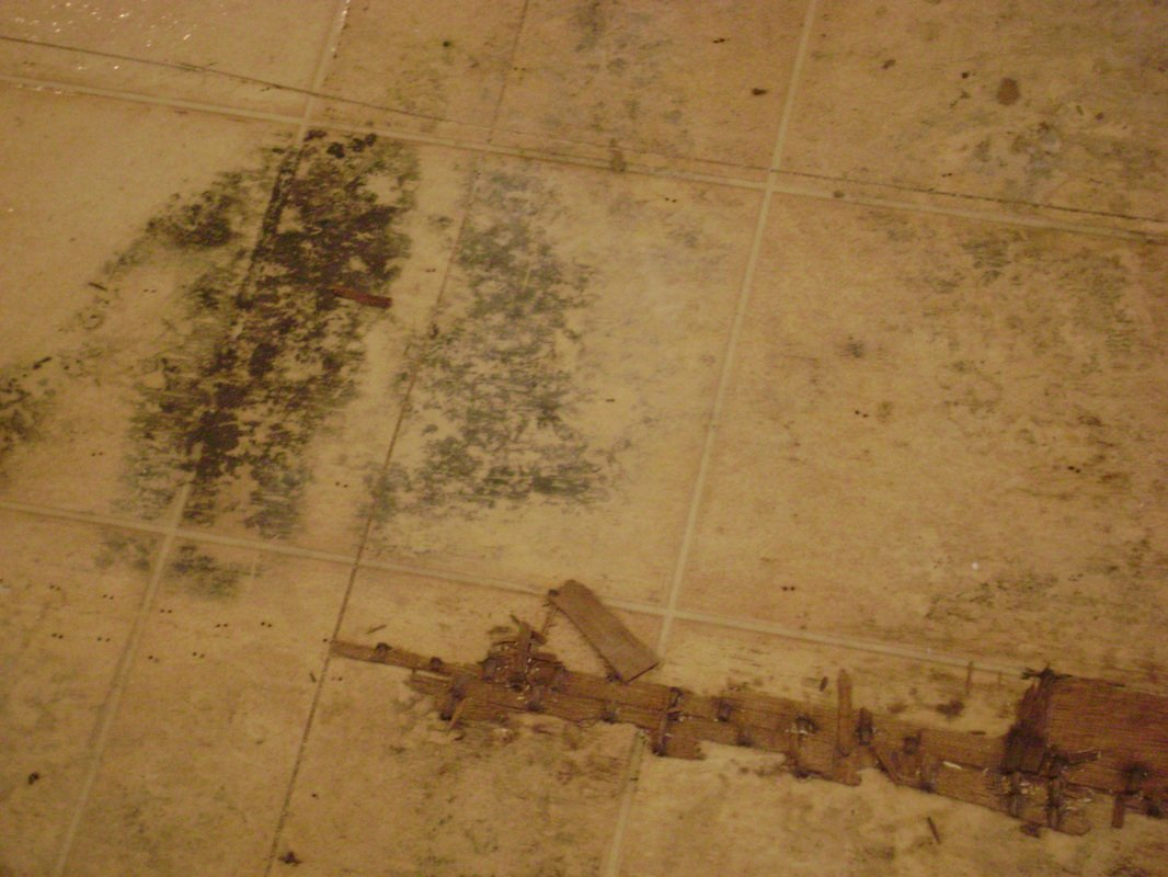 How To Repair Floors With Water Damage
