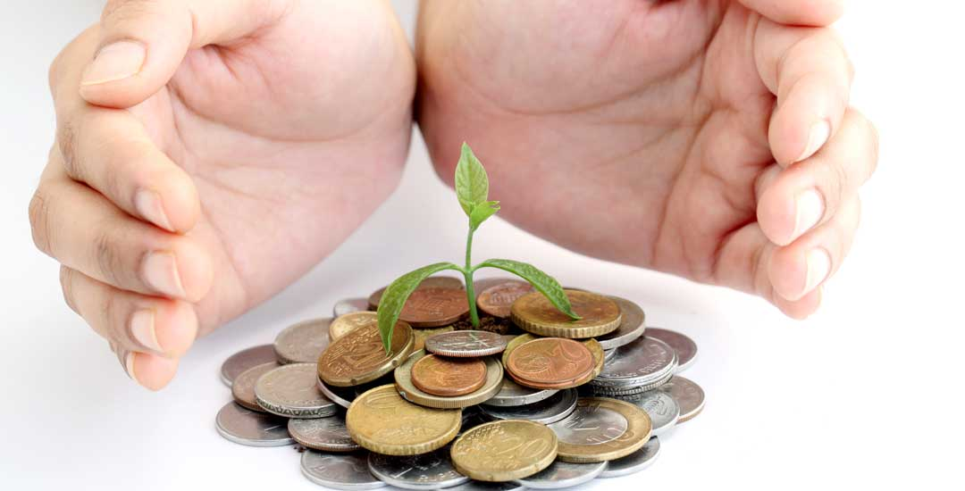 Plant growing from a pile of coins